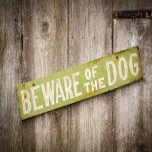 Michigan Dog Bite Law